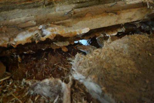 Tvarkome rastinių ir karkasinių namų pažeistas konstrukcijas